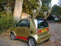 Antler conversion for Smart car